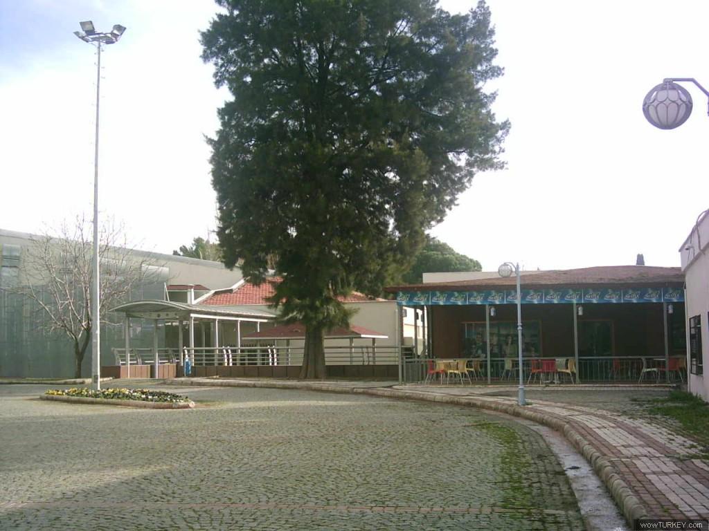 Ege üniversitesi önceki sonraki