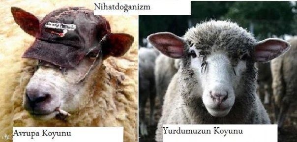 nihatdoğanizm